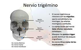 ejercicio terapeutico nervio trigemino