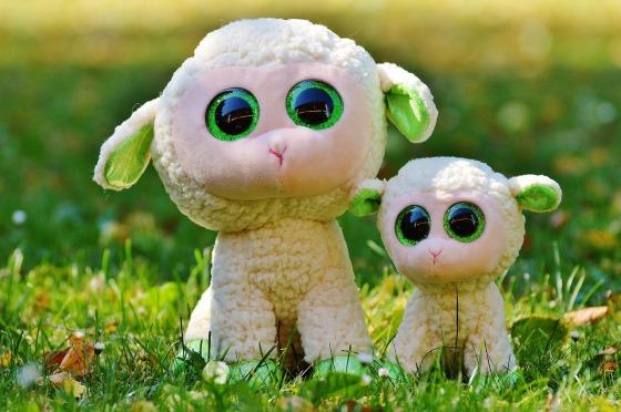sheep-861071_1280
